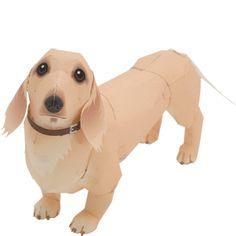 perro-salchicha-de-papel